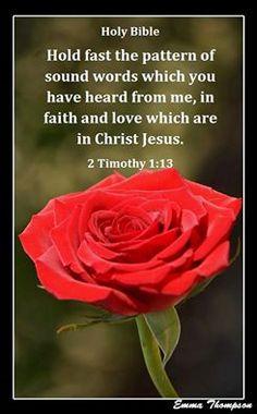 2 Timothy 1;13