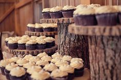Wooden log cake display