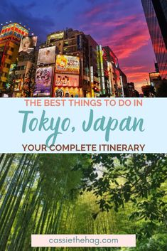 Japan Travel Guide, Tokyo Travel, Asia Travel, Travel Guides, Odaiba, Day Trips From Tokyo, Beautiful Places In Japan, Hawaii, Harajuku