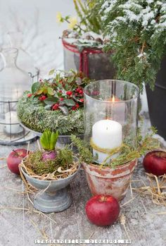 Wintry vignette of greens and candles and apples in true Scandinavian style. Garden Flow: And then Came the snow Christmas Garden, Swedish Christmas, Natural Christmas, Noel Christmas, Merry Little Christmas, Country Christmas, Winter Garden, All Things Christmas, Winter Christmas
