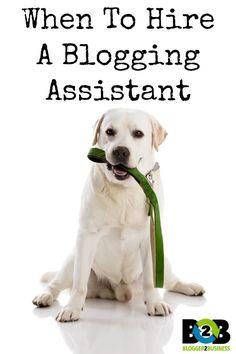 hire a blogging assistant