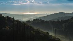Misty morning #mist #landscape #photography #greece #messinia