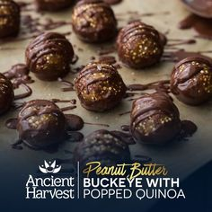 Savor every bit of these Peanut Butter-Buckeyes with Popped Quinoa created by Naturally Ella. Pin for a chance to win BIG in the Ancient Harvest #QuinoaCookieSwap. Learn more on facebook.com/AncientHarvest