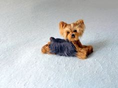 Custom 3D Pet Portrait  / Your Pet in Miniature / by GourmetFelted,