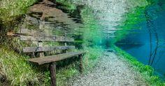 【幻想的】森でダイビング?毎年、水の下に沈んでしまうオーストリアの公園