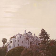 ✦ old money - lana del rey ✦ Lana Del Rey Ultraviolence, Lana Del Rey Lyrics, Song Lyrics, Lana Del Rey Albums, Chateau Marmont, Old Money, Summertime Sadness, Tumblr, Blue Hydrangea