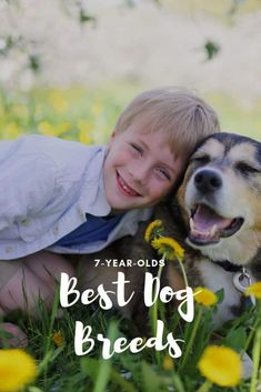 Thinking about adopting a family dog, but aren't sure about what breed is best for young kids? Here is a list of best dog breeds that both you and your children will love! Best Pets For Kids, Best Dogs For Families, Family Dogs, Best Dog Breeds, Cartoon Dog, Old Dogs, 7 Year Olds, Dog Photography, Animals For Kids