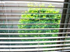 Use ArmorAll Car Wash to clean your windows and screens in/out your home. Removed grime and leaves them with a sparkle