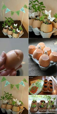 I would never have thought of egg shells for seed starters, but I want to try it. Biggest challenge will be cracking the eggs just so. Easter Crafts, Crafts For Kids, Easter Decor, Easter Table, Easter Gift, Easter Ideas, Happy Easter, Easter Party, Mini Vasos