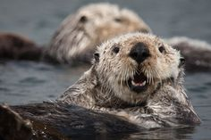"""Do I look good? I FEEL GOOD."" 