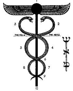The Caduceus and the Tree of Life, from The Book of Thoth, relationship between…