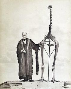 Richard Owen and a giant Moa skeleton, c. 1879