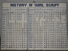 history of the tamil language Spiritual Symbols, Religious Symbols, English Words, English Quotes, Tamil Font, Royal Quotes, Word Symbols, Culture Quotes, Human Sketch