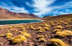 Os encantos e mistérios do Deserto do Atacama, no Chile #Chile #momondo