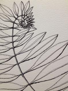 Fern, ink pen drawing