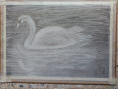Cisne, dibujo al carboncillo realizado con la técnica del negativo. Consiste en aplicar carboncillo a todo el papel y sacar el dibujo con las gormas de borrar.