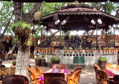 """Fotoviaje: Tlaquepaque, Jalisco, México. Día 10 """"La cuna de a... Puerto Vallarta, Travel Memories, Wonderful Places, Places To Travel, Ms, Patio, Cookies, Outdoor Decor, Summer"""
