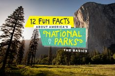 In honor of the anniversary of the U. National Park Service, Alamo is sharing 100 fun facts ranging from interesting to downright bizarre. Pinned By- The Pettitt Group, Austin Real Estate Rv Travel, Family Travel, Fun Facts About America, Cheap Family Vacations, Vacation Spots, Vacation Ideas, Vacation Games, Park Trails, Us National Parks