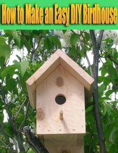 How To Build A Bird House Bird Houses Pinterest Bird Houses