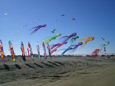 Kite festival in Ocean Shores, Washington