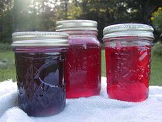 Jellies made from edible flowers. I've made lilac and dandelion; can't wait to try bee balm!