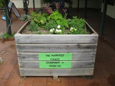 Blooming Harvest Crate.  Harvest Crate Co.  Robe, South Australia