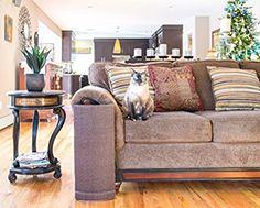 Sofa Scratcheru0027 Cat Scratching Post U0026 Couch Corner / Furniture Protector  (Charcoal