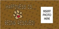 Personalized happiness is being rescued dag license plate only $8