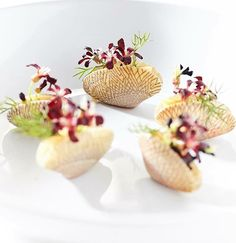 - Surf Clams l Bilimbi flower - @ Bangkok, Photo taken by Khun. Chefs, Michelin Star Food, Modernist Cuisine, Fancy Desserts, A Table, Edible Flowers, Molecular Gastronomy, Special Recipes, Savoury Dishes