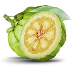 The health benefits of garcinia cambogia