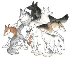 Okay, so Muk and Sno aren't wolves, they're huskies, but they're close enough! I felt like doing a big picture of a bunch of my wolf characters, but the. Wolves I Love Anime Wolf Zeichnung, Anime Wolf Drawing, Anime Art, Cartoon Wolf, Wolf Character, Fantasy Wolf, Fox Art, Anime Animals, Sketch Painting