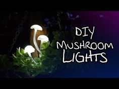 This would be awesome for a film or photography project.... >> Make Your Own Magical Mushroom Lights - YouTube