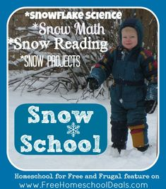 Snow School: Snowflake Science, Snow Math, Snow Reading and Snow Projects
