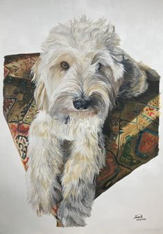 Pet Portraits, Hand Painted, Pets, Artist, Painting, Animals, Beautiful, Animales, Animaux