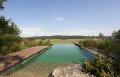 Natural Pool, Biotop Natural Pool, Natural Swimming Pool,Pool,Bio Pools,Eco Pools,Natural Swimming Pools Australia