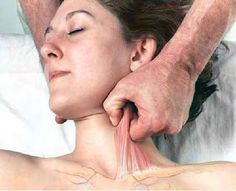 Basic Clinical Massage Therapy REALLY USEFUL INFORMATION!!!