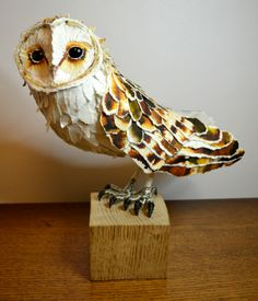 Barn Owl papersculpture by Suzanne Breakwell