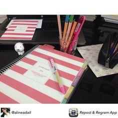 Chega de papéis soltos, listas e post it perdidos, organize sua vida em um único lugar! Compre online • receba em casa #meudailyplanner #dailyplanner #planneraddict #paperview_papelaria