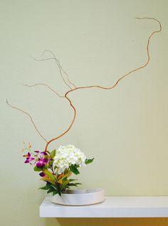 Ikebana                                                                                                                                                                                 Plus