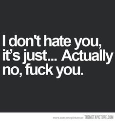 I don't hate you...