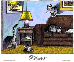 Kliban knew that cats could walk through walls. Crazy Cat Lady, Crazy Cats, I Love Cats, Cool Cats, Catsu The Cat, Kliban Cat, Kitten Photos, Cat Quilt, All About Cats