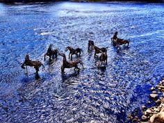 Artprize, in Grand River