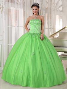 Sexy Lime Green Appliques Quince Dress Strapless with Taffeta and Tulle