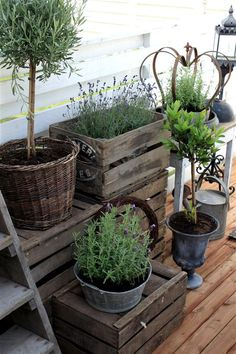 Repurposed Crates, Baskets and Zinc Containers - this is a pretty way to display flowers and herbs on a porch and a great way to hide plastic pots - Eenigwonen Blog