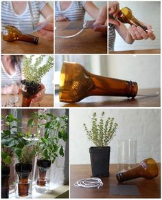 Self-watering glass bottle planters