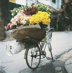 tips and pictures about Hanoi. Flower bike//