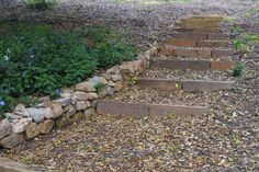 soft steps - chopped stone set in a mortar bed form the risers; recycled green waste mulch over compacted soil forms the treads w/dry stacked fieldstone for soil retention where needed - provides close-to-nature feel