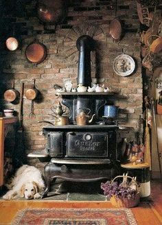 old stove in a rustic kitchen and a cute dog too Wood Stove Cooking, Kitchen Stove, Wood Burning Cook Stove, Rustic Kitchen, Vintage Kitchen, Victorian Kitchen, Cozy Kitchen, Kid Kitchen, Ranch Kitchen