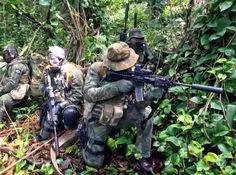 Brazillian Navy GRUMEC jungle warfare