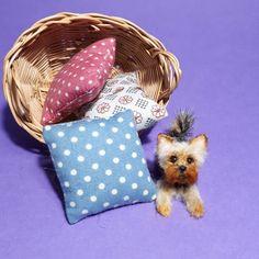 OOAK Realistic yorkie  dog Dollhouse Handmade by ewelina